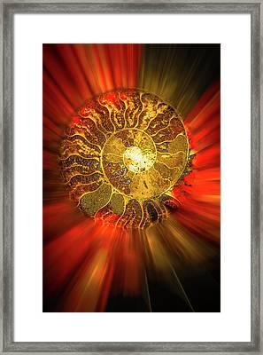 Radiance Framed Print