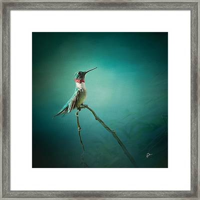 Radiant Jewel Framed Print by TK Goforth
