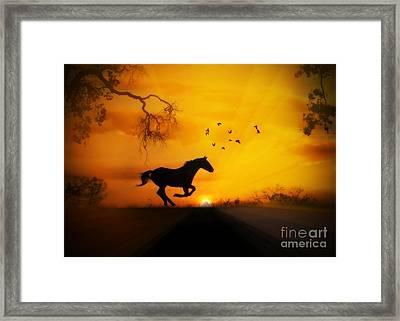 Radiant Run Horse And Sunrise Framed Print by Stephanie Laird
