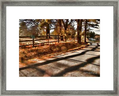 Radiating Framed Print by Betsy Zimmerli