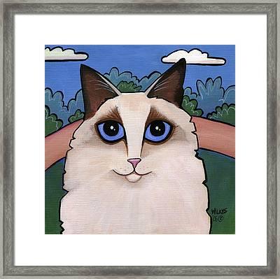 Ragdoll Cat Framed Print