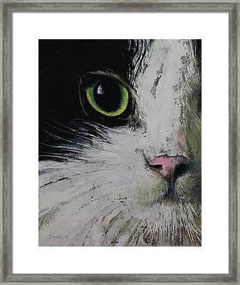 Tuxedo Cat Framed Print by Michael Creese