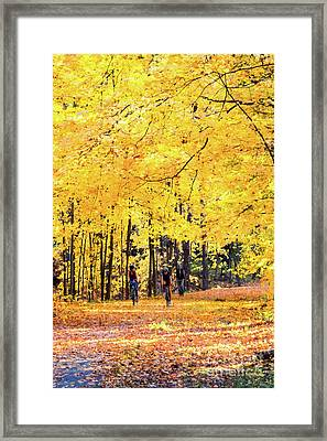 Autumn Glory On The Rail Trail Framed Print