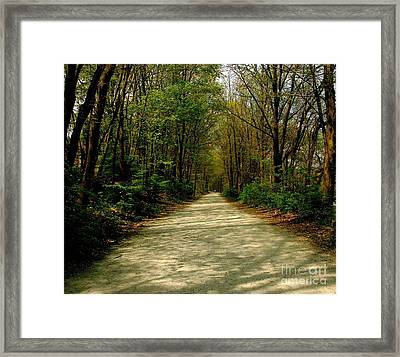 Rails To Trails Framed Print by Kristine Nora