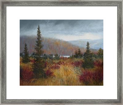 Rain Before The Snow Framed Print by Paula Ann Ford