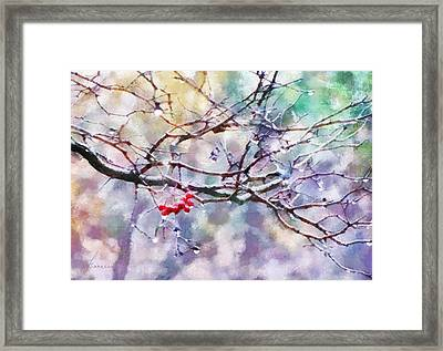 Rain Berries Framed Print