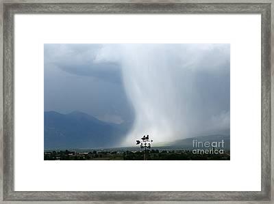 Rain Dance Framed Print by Patric Carter