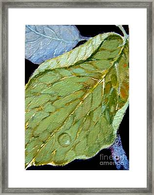 Framed Print featuring the painting Rain Drop  by Diane Ursin