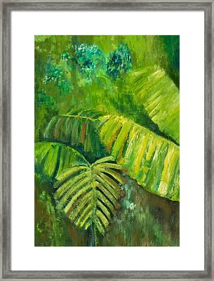 Rain Forest Framed Print by Carol P Kingsley