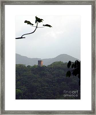 Rain Forest Puerto Rico Yokahu Observation Tower Framed Print by Charlene Cox