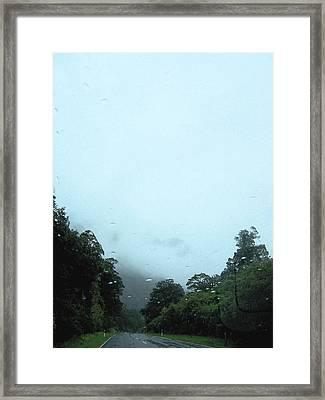 Rain Forest Rain Framed Print