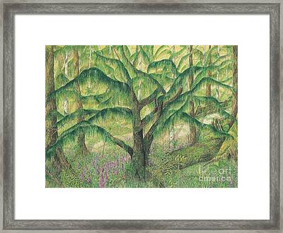 Framed Print featuring the painting Rain Forest Washington State by Vicki  Housel