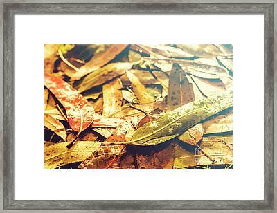 Rain In Fall Framed Print by Jorgo Photography - Wall Art Gallery