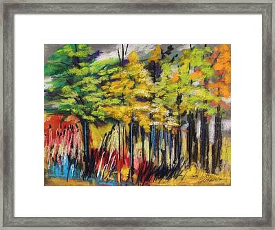 Rain In The Trees Framed Print by John Williams