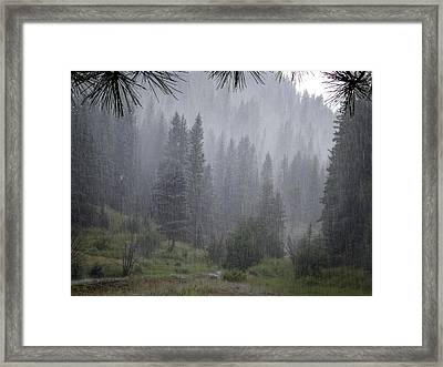 Rain Lovely Rain Framed Print by Mary Lee Dereske