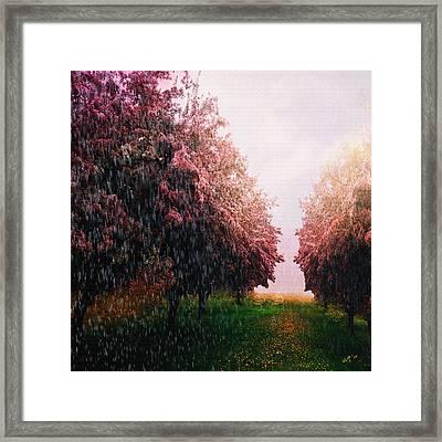 Rain On Imagination Framed Print