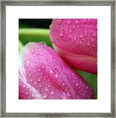Rain On Me Framed Print by Linda Mishler