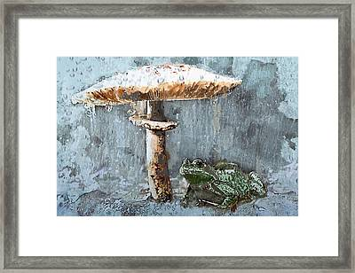 Rain On Toad Under Toadstool Umbrella Framed Print