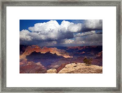 Rain Over The Grand Canyon Framed Print by Mike  Dawson