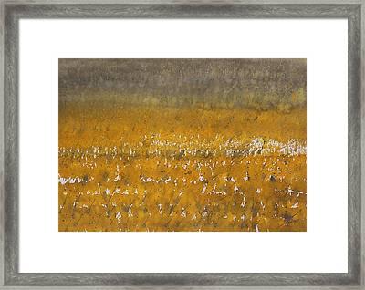 Rain Over The Marsh Framed Print by Sol Luckman