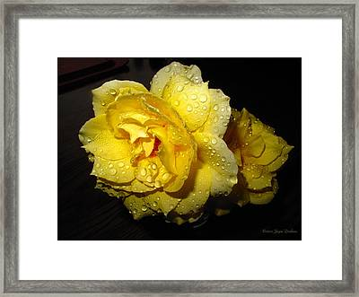 Framed Print featuring the photograph Rain Soaked Yellow Rose by Joyce Dickens
