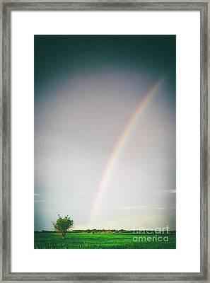 Rainbow #0157 Framed Print