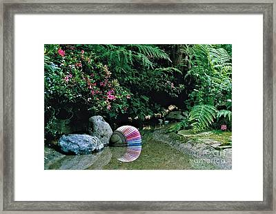Rainbow 2 Framed Print by Delores Malcomson