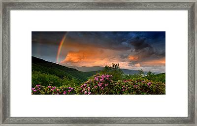 Rainbow And Rhododendrons On The Parkway Framed Print