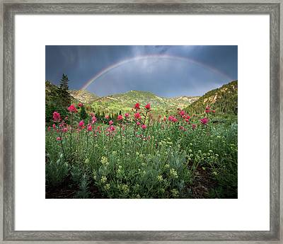Rainbow And Wildflowers Framed Print