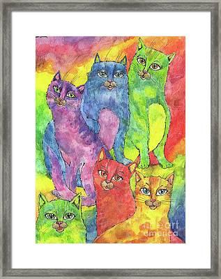 Rainbow Cats 2017 07 01 Framed Print