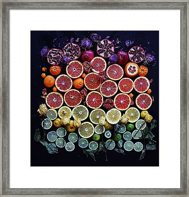Rainbow Citrus Etc Framed Print