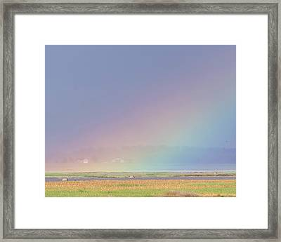 Rainbow Close Up Framed Print