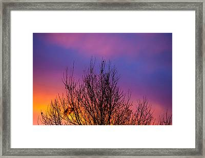 Rainbow Clouds Framed Print