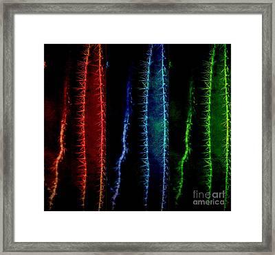 Rainbow Colors Framed Print by Susanne Van Hulst
