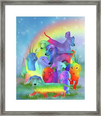 Rainbow Doxies 1 Framed Print
