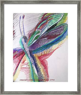 Rainbow Dragonfly Framed Print by Jamey Balester