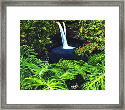 Rainbow Falls #83 Framed Print by Donald k Hall