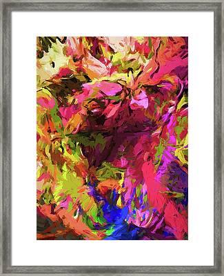 Rainbow Flower Rhapsody Pink Cobalt Blue Framed Print