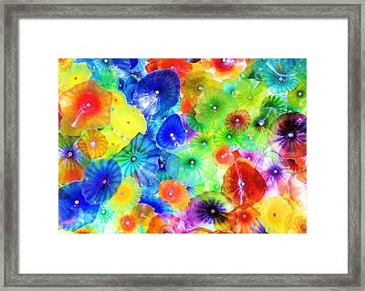 Rainbow Glass Framed Print by Jamie Brelloch