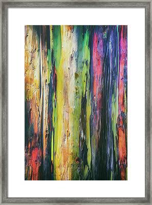 Framed Print featuring the photograph Rainbow Grove by Ryan Manuel