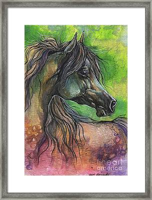 Rainbow Horse 2017 06 05 Framed Print