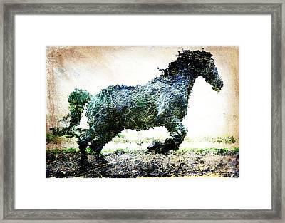 Rainbow Horse Framed Print by Andrea Barbieri