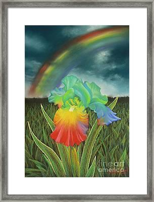 Rainbow Iris Framed Print by Louise Green