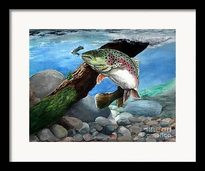 Frshwater Fish Framed Prints