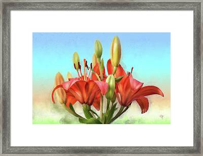 Framed Print featuring the photograph Rainbow Lilies by Lois Bryan