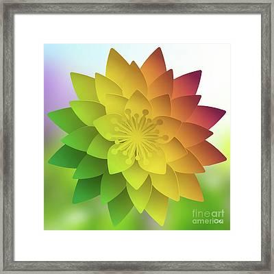 Rainbow Lotus Framed Print by Mo T