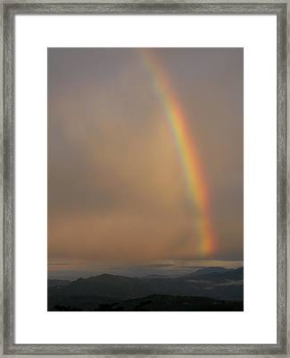 Rainbow No.1 Framed Print by Gregory Young