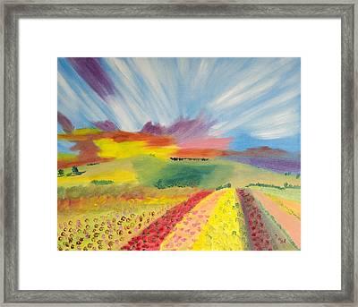 Rainbow  Flowers Framed Print