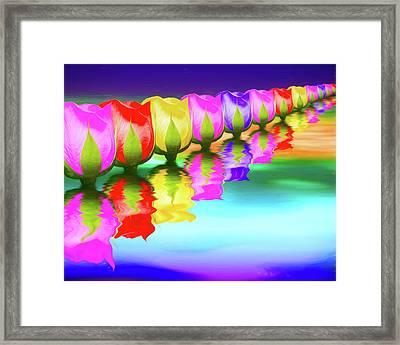Rainbow Of Roses IIi Framed Print