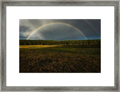 Rainbow Over The Forest Framed Print